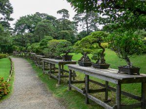 Asien, Japan